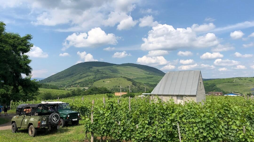 Piroska Tibor a Kékhegy pince borásza és tulajdonosa